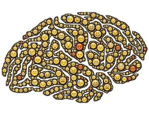 brain-954816_640